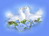 drawing of white doves on nest